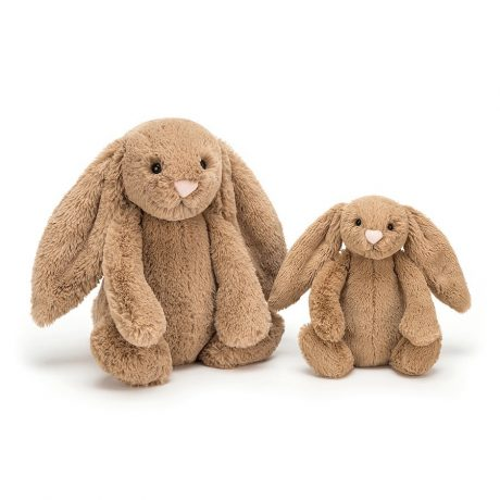Jellycat Bashful Biscuit Bunny-1